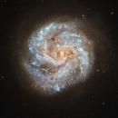 IC 391,                                Steven Marx