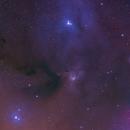 Reflection Nebula IC 4603, IC 4604 and IC 4605,                                Dean Jacobsen
