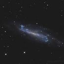 NGC4236,                                Florian APPERT