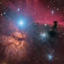 Nebulae beside Alnitak,                                Fluorine Zhu