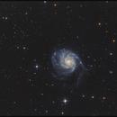 Noch ein M101, weil den noch nie jemand fotografiert hat,                                Gottfried Meissner