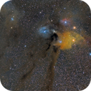 Antares area - 85mm,                                Frank