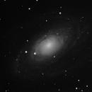 M81,                                dnault42