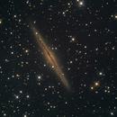 NGC891,                                reichmat
