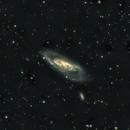 M106 Test Image from SRO Dark Site,                                jerryyyyy