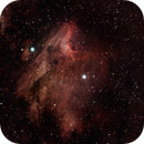 IC5070 Pelican Nebula,                                George C. Lutch