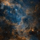 Cygnus Nebula Wide Field Bi-Color,                                Jim Lindelien