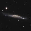 NGC 3079,                                Gary Imm