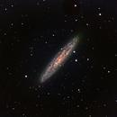 NGC 253 - Sculptor Galaxy - RGB,                                Mike Mulcahy