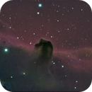 Horsehead nebula of 2008 taken by Carlo Martinelli and processed by me,                                Stefano Ciapetti