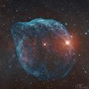 The Dolphin Nebula -  SH2-308,                                Delberson