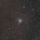 NGC 7023 Iris Nebula,                                MarkusB