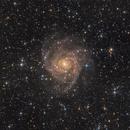 IC 342 - Hidden Galaxy,                                Robert Eder