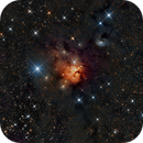NGC 1579 - Trifid of the North,                                Steven Marx