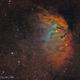 Sh2-101 Tulip Nebula,                                Wanda Conde