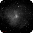 NGC1491 in Ha,                                Adriano Inghes