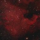NGC 7000 - North America Nebula,                                Mark Germani
