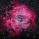 The Rosette Nebula, NGC 2237-9,NGC 2246,                                KAZUHIRO NONOMURA