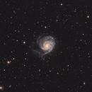 M101,                                riccardo civati