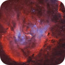 The Bok Globules in IC 2948 Running Chicken Nebula (Bicolor),                                Ariel Cappelletti