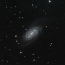 NGC 2903 Galaxy,                                Ryan Betts