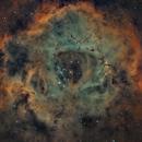 NGC2239-ROSETA NEBULA,                                Toni Climent