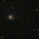 M101 und NGC5474,                                Hermann Schieder