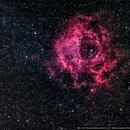 NGC 2237 - Rosette Nebula,                                Alexandre Polleti