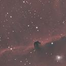 Horesehead Nebula,                                Brian Beamer