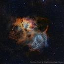 Sh2-132 the Lion Nebula.,                                Rogelio Sanchez Albusac