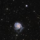 Messier 101,                                Bart Delsaert