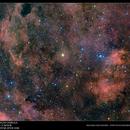 Gamma Cygni Nebula,                                Michael van Doorn