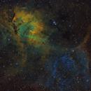 Sh2-132 - A SHO Lion in the Sky,                                Fabian Rodriguez Frustaglia