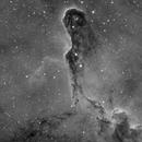 IC1396 Elephant Trunk Nebula in H Alpha,                                wannaberocker_x