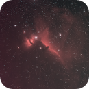 Horsehead Nebula,                                Terence Gatt