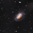 NGC 4725 & NGC 4712,                                Seymore Stars