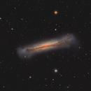 NGC 3628, the Hamburger Galaxy,                                flyingairedale