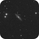 SN2019np in NGC 3254,                                M. Levens