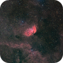 Sh2-101 Tulip nebula,                                Federico Bossi