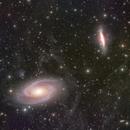 M81 M82+IFN,                                s1macau