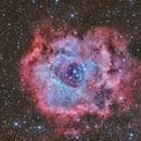 Rosette Nebula , Roseta,                                Santiago Rodríguez Hernández