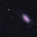 NGC 2903,                                John Butler