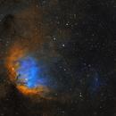 Tulip Nebula and Cygnus X-1 Shockwave - two panel mosaic,                                Steve Milne