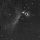 IC 434 Horse Head Nebula-HA-Canon 250 mm,                                Adel Kildeev