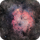 Elephant trunk nebula (IC1396),                                GalacticRAVE
