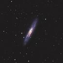 NGC 253,                                saxtim
