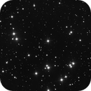 M44 (The Beehive Cluster),                                Luís Ramalho