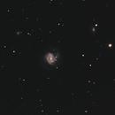M 61 et SN2020jfo,                                Gérard Nonnez