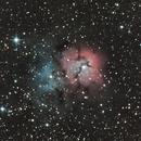 Trifid Nebula,                                pterodattilo