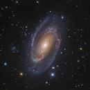 M81: Bode's Galaxy,                                Toshiya Arai